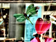 Papillion...