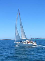 careen002 (dolphinsailing) Tags: sailing gardenisland duskydolphin