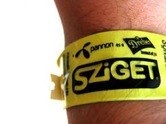 Sziget 2006 - I was (Master Mason) Tags: macro yellow festival hungary budapest pass explore sziget ungheria sziget2006 ilpostopiùincredibiledelmondo themostamazingplaceintheworld