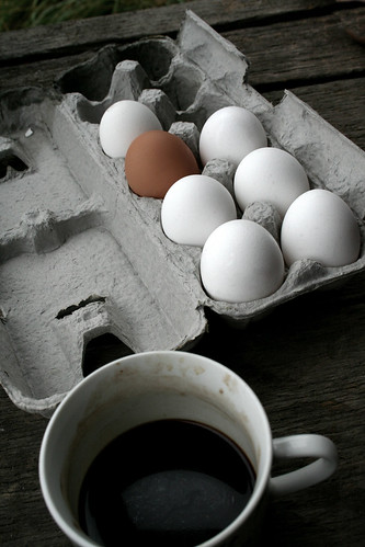 Odd Egg Out