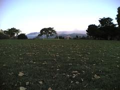 20060910T185336 (earthasa) Tags: sanfrancisco california park sunset birds fog bay sundown dusk fowl thick rolling millvalley marshes rollingin ctxflickr