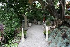 Walkway - Heather Lenkin garden