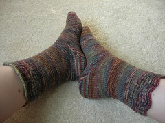 Fleece Artist Autumn socks