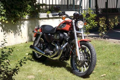 Harley Davidson 883 Iron Wallpaper. a Harley Davidson 883 Iron