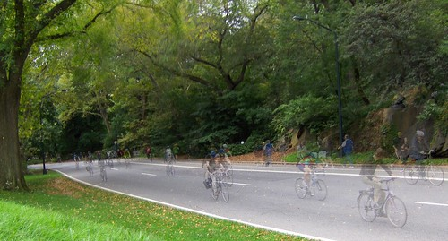 bicycles in central park