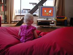Tip kijkt Nijntje 1 (BarbaBas) Tags: girl kids children kinderen tip miffy meisjes nijntje devalk dreumes