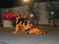 Fiesta de fin de año 2005 : Alicia en el País de las Maravillas (Las fiestas del Jardín) Tags: 2005 fiesta aliciaenelpaísdelasmaravillas gatodecheshire
