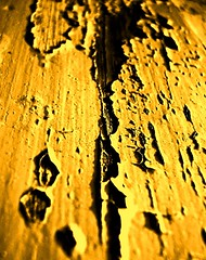 Roughness is sometimes great.. (Harraz) Tags: wood yellow paint rough paints roughness harraz harrazphotography