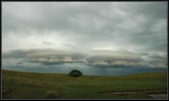 Stratified #3A (Reg~) Tags: sky cloud storm weather clouds squall line shelf pasture kansas thunderstorm storms lenticular thunder stratified severe thunderstorms severeweather squallline lenticularclouds squal shelfcloud shelfclouds squalline squalcloud kansasthunderstorm kansasthunderstorms squallclouds squalclouds