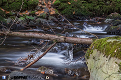 Waterfall, Aires waterfall, The Lake District (Annavr6Photography) Tags: lakedistrict waterfall longexposure iceicles moss canon canon5d2 stones tree autumn aireswaterfall thelakedistrict
