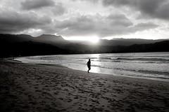 Copy of Kauai b&w61 (chiarina2016) Tags: kauai hawaii island beach monotone blackandwhite chiarinaloggia stormyseas waves trails hiking surf hanalei hanaleibeach sunset