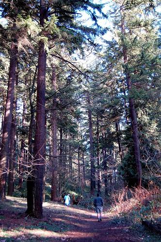 Mt Tabor Park