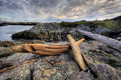 Driftwood and Rocks (DARREN ST0NE) Tags: canada color 20d photoshop canon eos interesting rocks bc britishcolumbia victoria explore driftwood multiple photoshopcs hdr papercut orton exposures photomatix photomechanic explored darrenstone isawyoufirst lightgazer