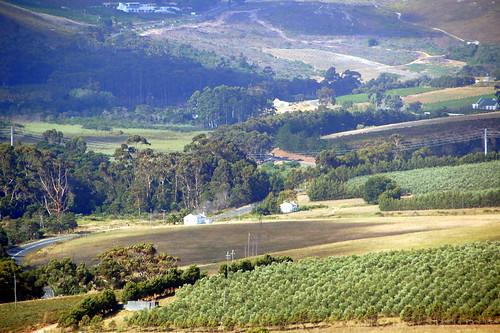 The Hemel en Aarde Valley
