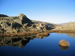 Blue Tarn (Scuola di Atene) Tags: reflection landscape tarn lakeland tatebritain gibsonknot howwearenow