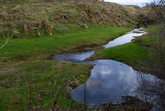 Creek (Tonym1) Tags: