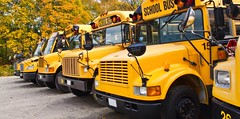 Haryana: The Haryana Human Rights Commission (#HHRC), taking a suo motu cognizance of the recent road mishaps (cityspideyapp) Tags: schoolbus yellow backtoschool autumn fall transportation vehicle school bus row public ride stop lights parked drive front grille mirror safety children trees