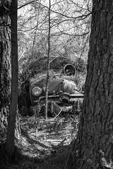 Spending The Night (Wayne Stadler Photography) Tags: abandoned preserved junkyard georgia classic automotive derelict overgrown vehiclesrust rusty retro vintage oldcarcity rustographer rustography white