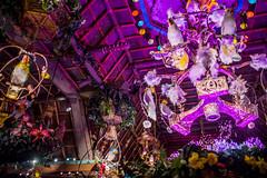 Enchanted Tiki Room - Disneyland (GMLSKIS) Tags: disney nikond750 anaheim california disneyland