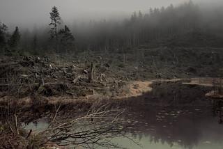 Am Huzenbacher See.