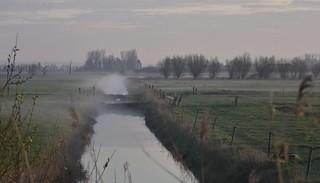 Treene-Marsch in Süderhöft; Nordfriesland (6)