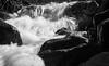 "HFP#NIADTV  ""Vortex"" (HFPhoto1) Tags: photography waterfall fairyland monochrome lightshaddow rimlight contrastoflightshaddow highkeylight"