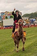 _IMG3166 (douglasjarvis995) Tags: camel racing win winner festival fair yorkshire bronte colour