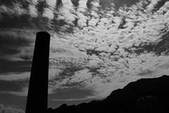Cheminée (Arnaud Gabriel) Tags: pfe paysage paysagiste usine france friche urbex abandonned pollution ensp