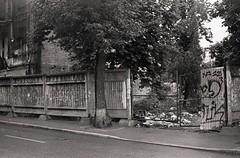 20052018023 (samitrofanov) Tags: svema 25025 film home develop minoltax700