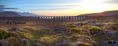 Ribble Head Viaduct (rayduckworth) Tags: yorkshiredales ribbleheadviaduct landscape sunset