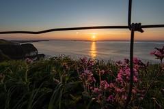 Sunset (Glenn Cartmill) Tags: summer glenncartmill sunny ocean sea northcoast portrush ireland unitedkingdom uk northernireland sunset