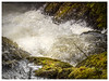 Snow Melt at Swallow Falls (urfnick) Tags: red rapids snow moss spray swallowfalls north wales snowdonia canon eos 1300d sundaylights river waves nature outdoor landscape bush tree leaves