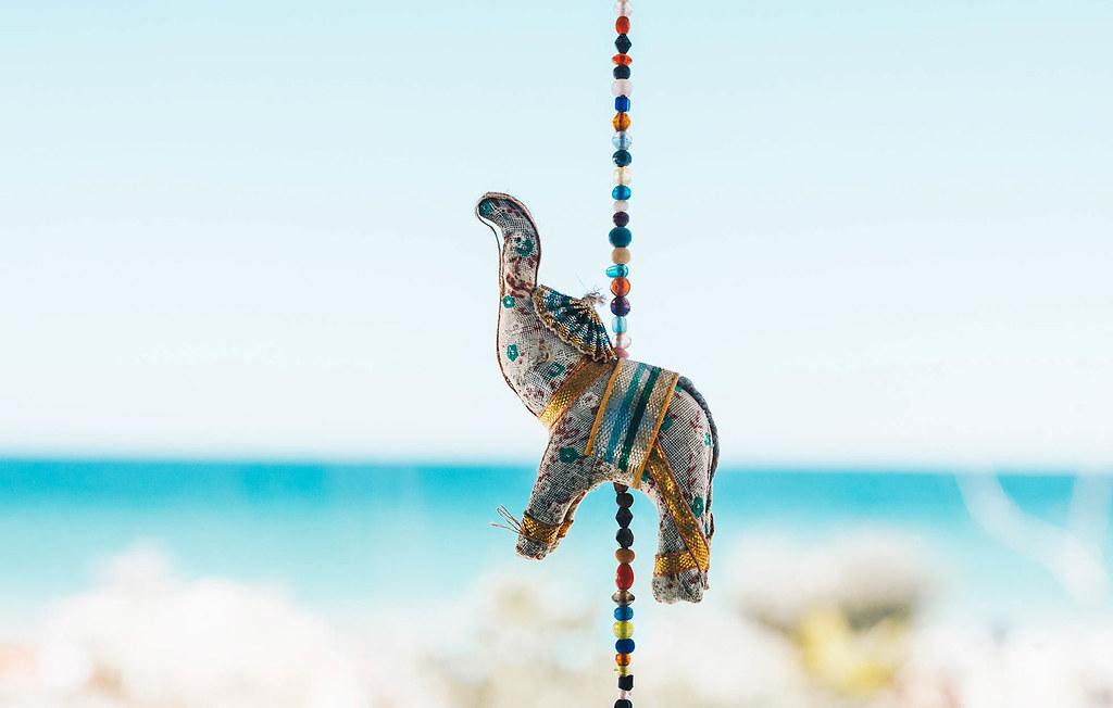 Indian elephant decoration on sea background. Interior .