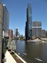 Chicago River, Wolf Point with Kayakers (Mary Warren 11.2+ Million Views) Tags: chicago architecture building urban chicagoriver wolfpoint water skyscrapers skyline cityscape kayakers