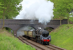 73156 - Rabbits bridge (Andrew Edkins) Tags: 73156 standard5 greatcentralrailway railwayphotography preservedrailway canon geotagged light rabbitsbridge travel trip steamtrain goodsgaloregala trees may 2018 spring uksteam