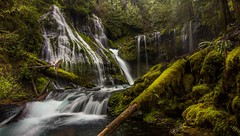 Panther Creek Falls (Cole Chase Photography) Tags: panthercreekfalls waterfall washington pacificnorthwest spring moss green f18 15 iso 100 1116mm canoneos5dmarkiii f1815iso100
