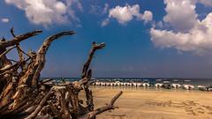 Elephanta Beach - Havelock Island, India (Kartik Kumar S) Tags: elephanta beach havelock island andaman india boats ships