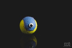 134/365 - An Eye On the Ball (Forty-9) Tags: photoaday playonwords googlyeye softbox efs1785mmf456isusm forty9 3652018 365 2018 ball yongnuospeedliteyn560iv photr strobist tomoskay 14thmay2018 yongnuo lightroom canon strobism studio efslens may eos60d project3652018 134365 eye monday aneyeontheball project365 flash day134 keepinganeyeontheball 14052018