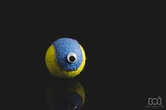 134/365 - An Eye On the Ball