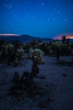 Silence of the Chollas (benzhtan) Tags: astrophotography blue bluehour california cholla desert evening joshuatree landscape nationalpark night plant sky stars travel canon canoneos70d 24f14l