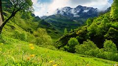 Castro Valnera (1707 m) (Carpetovetón) Tags: agua sonya6000 pandillo vegadepas nacimientopas río aguasal cantabria españa prado hierba paisaje montaña castrovalnera bosque vallespasiegos