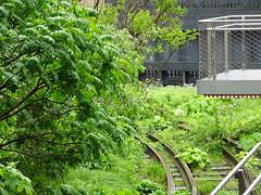 High Line, New York City (iainh124a) Tags: iainh124a newyork ny nyc manhattan bigapple sony sonycybershot dschx90 dschs90v cybershot dx90 dx90v