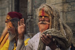 0734 Hindu Sadhus II (Hrvoje Simich - gaZZda) Tags: people man holy wise hand portrait beard hair sadhus kathmandu nepal asia nikon nikond750 lensbabyvelevet8518 gazzda hrvojesimich