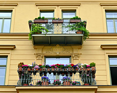 Balconies (Colorado Sands) Tags: flowers building flowerboxes sandraleidholdt munich germany allemagne allemande architektur architecture balcony german alemania europe 1895 münchen