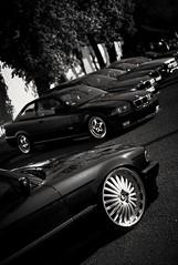 BMW avenue (mateusz.jedrak1) Tags: bmw wroclaw event e38 e46 e39