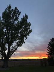 Sunset (Chuckcars) Tags:
