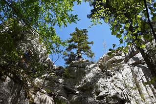 Put Malog Princa, Crnopac, Park prirode Velebit, Hrvatska / Little Prince Trail, Crnopac, Velebit Nature Park, Croatia