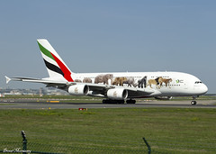 """Emirates """"United for Wildlife"""" livery A380-800 A6-EEQ (birrlad) Tags: frankfurt fra main international airport germany aircraft aviation airplane airplanes airline airliner airlines airways taxi taxiway takeoff departing departure runway airbus a380 a380800 a380861 a6eeq emirates livery unitedforwildlife colour scheme decals titles special ek46 dubai"""