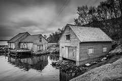 """The old boat houses"" - BW version (Terje Helberg Photography) Tags: bw forfall abandoned blackandwhite bnw boathouse clouds cloudscape coast coastal coastalenvironement decay dock harbor harbour mono monochrome neglected old rope ropes sea seascape sky skyscape trees unattended water wires woodhouse woodenhouse"