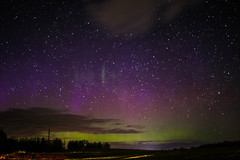 Faint Aurora's (Dan's Storm Photos & Photography) Tags: wisconsin weather nature northernlights nightscape night nightsky nightlife nighttime nightphotography nightscapes astronomy auroraborealis auroras astrophotography aurora skyscape skyscapes sky space spaceweather